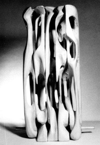 Structura(brad)