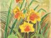 Narcise,acuarela,15x20 cm