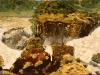 Cascada Iguacu  2 - ulei pe carton panzat, 35x50
