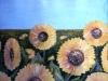 camp-de-floarea-soarelui-ulei-carton-65x70