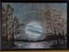 Luna pe lac - 2008