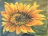 In soare,acuarela,15x20 cm